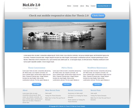 BizLife 2.0 — A free Thesis 2.0 skin