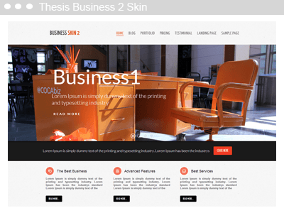 Thesis Business 2 Skin