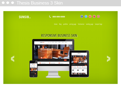 Thesis Business 3 Skin