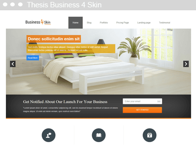 Thesis Business 4 Skin
